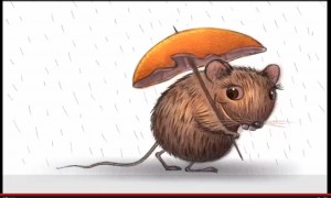 Rat with an Orange Peal Umbrella